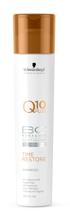 Schwarzkopf Q10 BC Time Restore Shampoo - Szampon odbudowujący do włosów dojrzałych, 250 ml