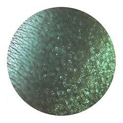 Tammy Tanuka Pigment do powiek 248 1ml