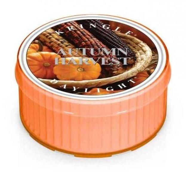 Kringle Candle daylight Świeczka zapachowa Autumn Harvest 42g