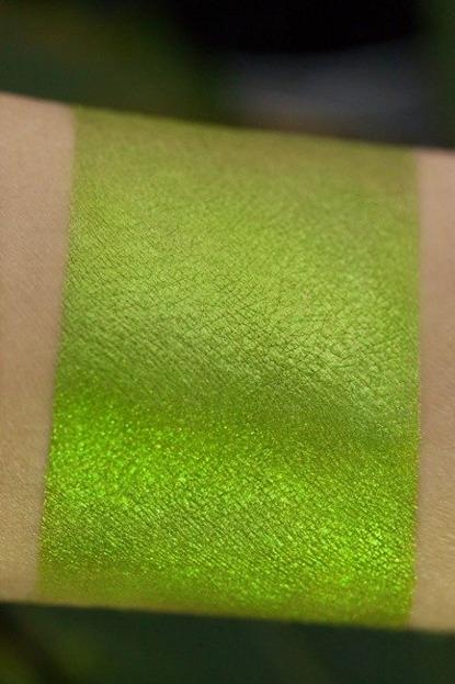 Tammy Tanuka Pigment do powiek 173 1ml