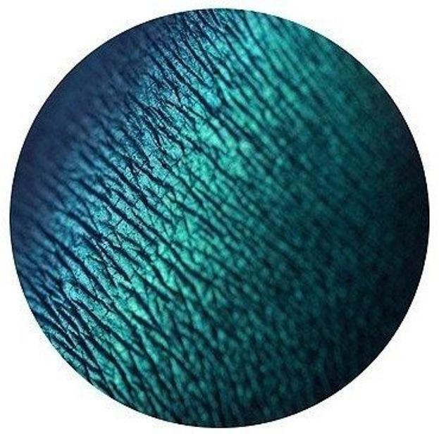Tammy Tanuka Pigment do powiek 51 1ml